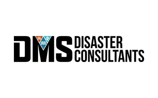 DMS Consulting