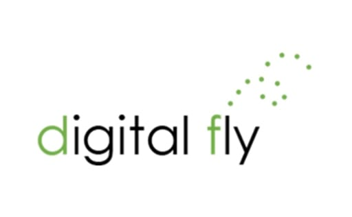 Digital Fly